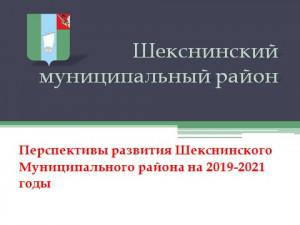 PerspektivyRazvitiya_2019_2020